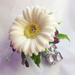 Prom Corsages from Oasis of Fleet Flower shop